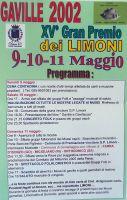Festa_limoni_02