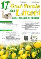 Festa_limoni_05