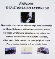 fronte_dvd