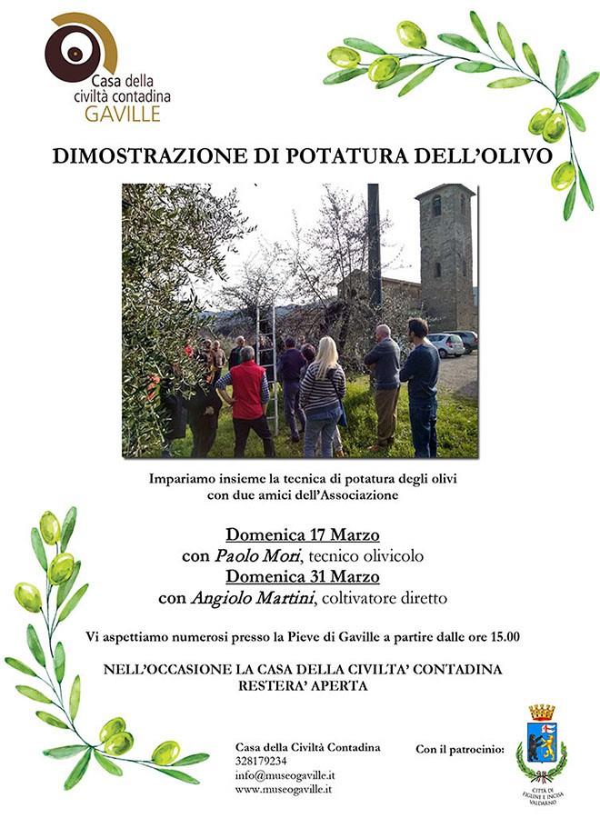 Dimostrazione potatura olivi
